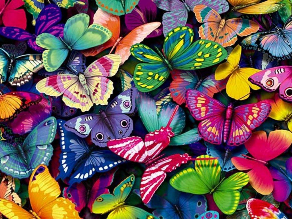 Бабочки в животе..